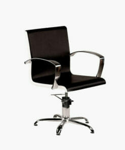 Ayala Partner Hydraulic Styling Chair Special