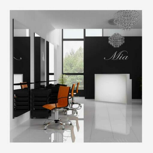 Mila Salon Furniture Package C